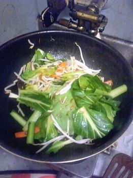 20160308-会社で料理-さっぱり味の肉野菜炒め-06-小松菜の葉.jpeg